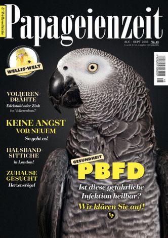 Papageienzeit 45 wunderschöner Graupapagei: Keine Angst vor Neuem, PBFD - ist die Infektion heilbar?, Halsbandsittiche in London und Volierendrähte