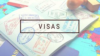 fiche info visa