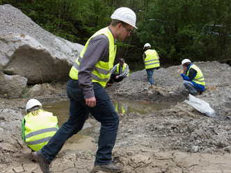 Gemeinsam für mehr Artenschutz: NABU-Mitglieder beim Erfassen vom Gelbbauchunken im Steinbruch Röhrig in Sonderbach.