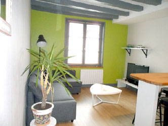 Holydays rental in Tours - 1 to 4 persons