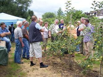 Sommerschnittkurs in der Obstplantage