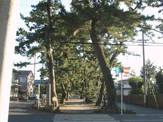 御穂神社 神の道