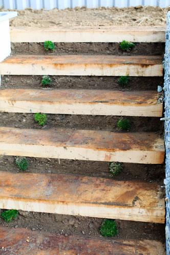 Escalier en bois pour le jardin