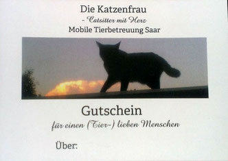 Catsititting, Mobile Tierbetreuung, Tiertaxi Saarland