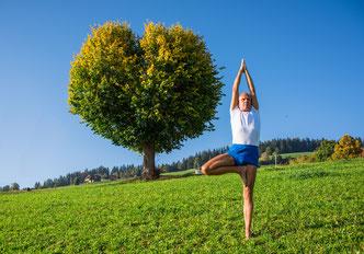 Baum, Vrikshasana, Yoga, Asana, Herzbaum, Herbstbaum, Hermann Leu,