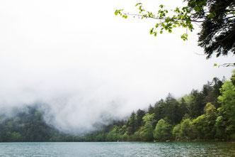 同湖は大雪山国立公園唯一の自然湖。最深部は約100m。