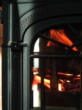 ほかの暖房機器と併用するのなら、お隣のフミ兄んちのストーブのように、シンプルな機構のクリーンバーン方式のストーブがいいのかもしれない。なんてったって楽チン。綺麗な炎が揺れるのを眺めていたいのなら、絶対的にこっちだ。触媒式のわが家のストーブは、1日の大半を薪ストーブのある部屋で過ごしているような、長時間薪を焚き続ける人向けなのかも。メーカー公表値では、約25%の薪を節約できるとか。いずれのストーブにしても、ひと冬に使う薪の量は相当なものだから、燃費はシリアスな問題です。