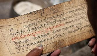 Ladakh, Zanskar, Trekking, Reisen, Bhuddismus, Klöster, Spituk, Thikse