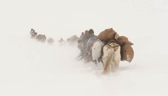 Thomas Zwahlen, Diashow, Explora, Himalaya, Nomaden im Himalaya, Quer durch den Himalaya, Nepal, Tibet, Amdo, Kham, Ladakh
