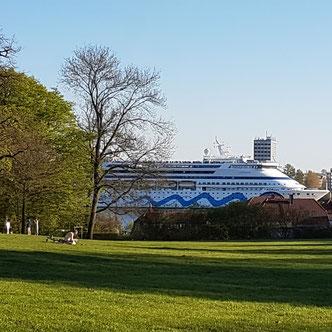 Jenischpark mit Blick auf Elbe und Kreuzfahrtschiff