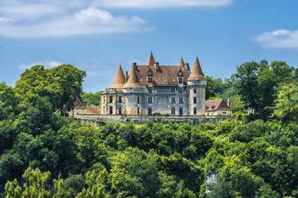 Castle in Dordogne
