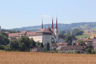 Nord-Ost Ansicht Klosterkriche Muri vor Weizenfeld