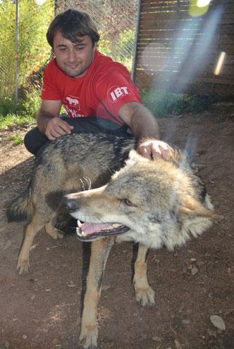 Programa de seducción ambiental con el Lobo en las escuelas