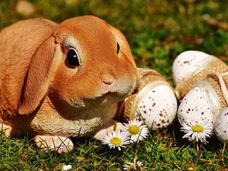 Brauchtum Ostern und seine Feiertage - kindergerecht und ausführlich erklärt.