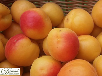 Halbierte Aprikose bzw. Marille auf einem Teller