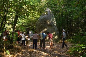 Visite du G1 au Bois de Fourgon - JNA 2014