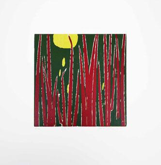 Art, Print, Druck, Holzschnitt, woodcut, linolcut, grafik, graphic, gräser, gras, natur, mond, rot, grün, gelb, red, green, yellow, moon, nature, landscape, original,