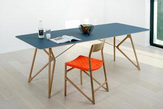Der-Tisch-Tink-mit-Linoliumbelag-ist-pflegeleicht