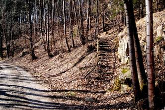 Bild: Alte Seifertmühle Wünschendorf Aufstieg