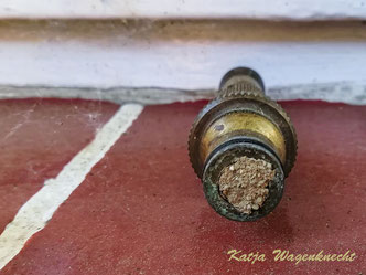 Mauerbiene Osmia Wildbiene Nistplatz wild bee mason bee solitary bee Schlauchdüse