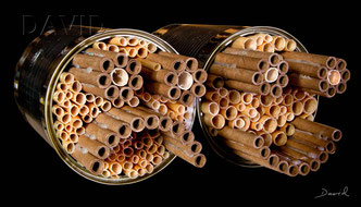 Insektenhotel Insektennisthilfe Nisthilfe inscet hotel nesting aid bug house Mauerbiene mason bee wild bee Wildbiene Schilf Pappröhrchen  Strohhalme tin can
