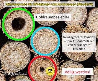 Nützlingswaben für Wildbienen und Grabwespen Firma Neudorff markhaltige Stängel waagerecht gebündelt Insektennisthilfe Insektenhotel Bienenhotel Bienenhaus wild bee insect hotel nesting aid bug hotel sphecid wasp