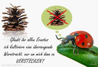 Marienkäfer Tarnung Nützling Insektenhotel Insektennisthilfe Nützlingshaus Nützlingshotel Blattläuse Warnfarben Kiefernzapfen