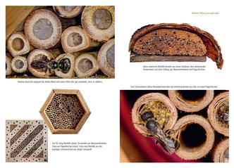 Alle wesentlichen Informationen zu einem bestimmten Insektennisthilfen-Typ sind jeweils in einem eigenen Kapitel zusammengefasst und mit zahlreichen Fotos illustriert.
