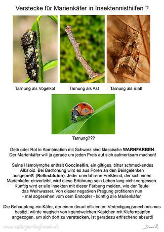 Marienkäfer Tarnung Nützling Insektenhotel Insektennisthilfe Nützlingshaus Nützlingshotel Blattläuse Warnfarben