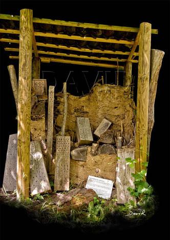 Wildbienen-Nisthilfe mit angebohrten Balken und Lehm