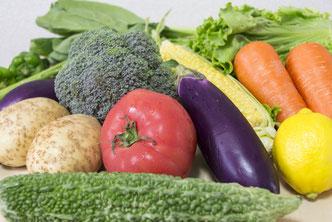 癌(ガン)予防に効くとされる野菜|ゴーヤとブロッコリー