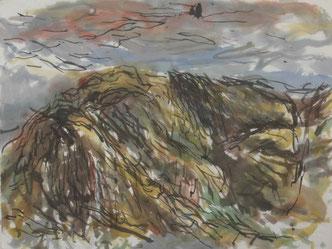 BEI LICHTENHAIN   2010  Chinatusche und Aquarell auf Papier  48,5 x 64,5 cm