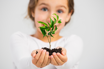 Ecologie produits locaux Montessori