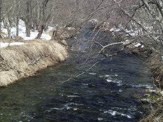 支流との合流点や湧き水のある場所のそばは水温の変化を疑うべし。水温しだいでは瀬の中も見逃せない。
