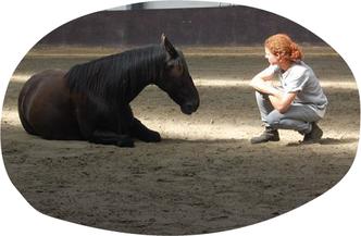 dans met paard workshop
