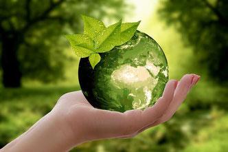 Nachhaltigkeit und Umweltschutz - Niedrigenergiehaus, Wärmepumpe, Pelletheizung, Energieeffizienz, Klimaerwärmung, Umweltschutz, Umwelt, Solarwärme, Bauherr, Klimawandel, Energiekosten, Bau, Energiesparhaus, Nullenergiehaus - Massivholzhaus - Ökohaus