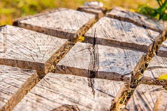 Mit der Stubbenfräse wäre das Entfernen der Baumstümpfe und Baumwurzeln schneller und einfacher - Betonmischer, Blockhaus, Holzhaus, Bauen, Hausbau, Holz, Blockhausbau, Streifenfundament, Eigenheim, Baustelle, Blockhaus bauen, Baumaschinen, Baugeräte, Bau