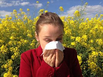 Mädchen im Rapsfeld - Pollenallergie - Bild Pixabay