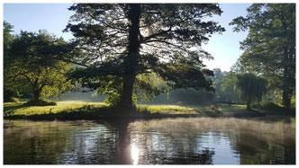 Kahnfahrten durch die Wasserlandschaft des Spreewaldes ohne Anmeldung