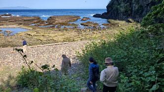 斜面を下っていくとそこは磯浜。奥には伊豆大島も見えています。
