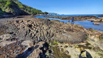 波食棚がずっと続き、足元には柱状節理や枕状溶岩が発達しています