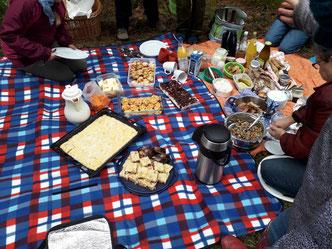 Picknick lecker Kuchen, gute Speisen, Getränke, Bier