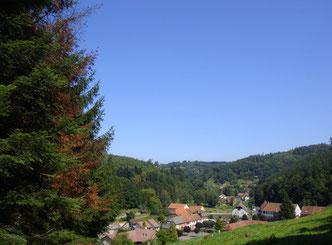 lettenbach vue générale verrerie saint-quirin