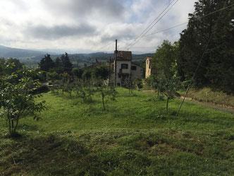 Schriftstellerparadies Barliano