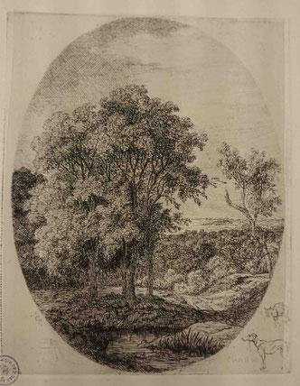 Charmier, Boqueteau près de la Serve, vers 1850 (BM Lyon Res Est 28211)