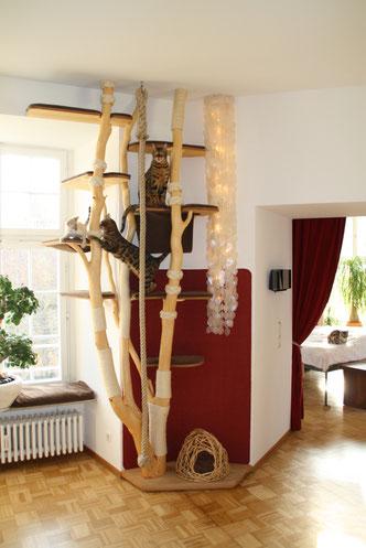 Naturkratzbaum für Katzen mit Liegemulden, Ebenen aus Multiplex, Polsterstoff und Sisal. Klettertau und Lichterwasserfall integriert.