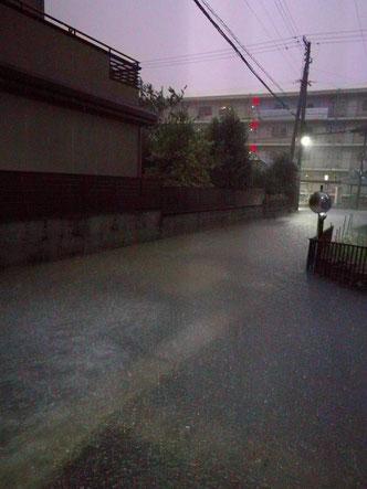 提供写真。深夜、雷の閃光をフラッシュ代わりに撮影したそうです。