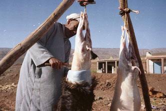unterhalb der Strasse wurden zwei Schafe geschächtet