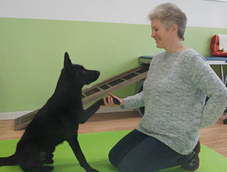 Hundephysiotherapeutin Heike Amthor