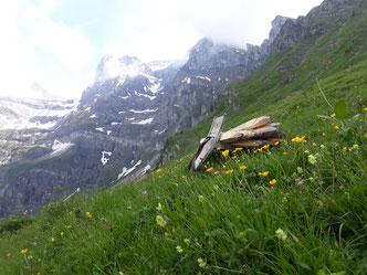 Zaunmaterial in Bergwelt